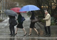 Some people found the need for umbrellas as rain fell Tuesday, Jan. 15, 2019, in Sacramento, Calif. The first in a series of Pacific storms brought rain to much of the state and snow in the mountains. (AP Photo/Rich Pedroncelli)